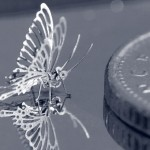 'Tantafly' next to a 5p piece.
